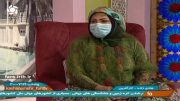 کار آفرین موفق فیروزآبادی