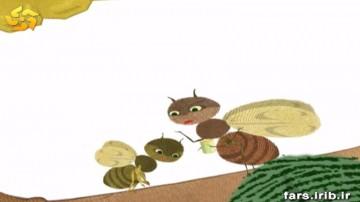 زنبور کنجکاو