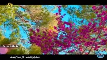ترانه با صدای میثم ابراهیمی