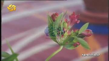 ترانه دورت بگردم با صدای محسن بهمنی