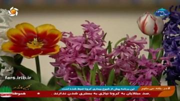 نگهداری گلهای بهاری
