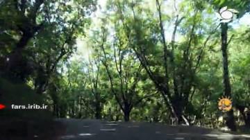 ایران آباد