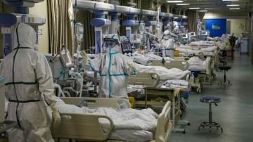 رشد آمار مبتلایان کرونا در فارس -08 تیر