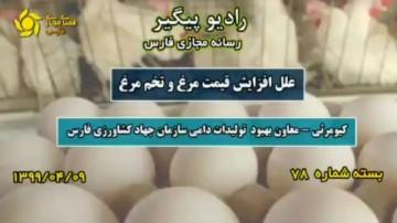 علل افزایش قیمت مرغ و تخم مرغ